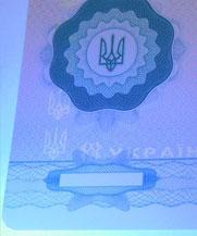 Диплом - свечение УФ (Ивано-Франковск)