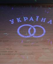 Диплом - микро ворс в УФ (Ивано-Франковск)
